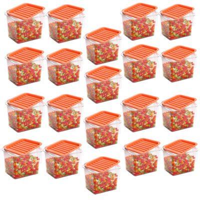 Handle Container 1100ml (ORANGE) Pack of 20