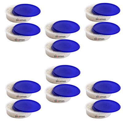 SOLOMON KHAKHRA BOX BLUE Pack of 12